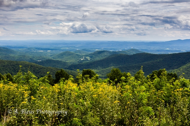 Pano view of Appalachian Mountain Ridge -Virginia-93R1032