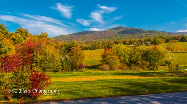 Vermont Splendor-93E1835