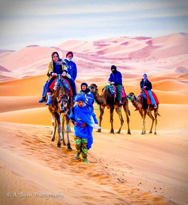 Sahara Desert, Morocco, IMG2393