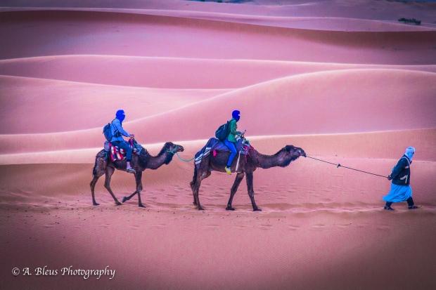 Sahara Desert, Morrocco, IMG_2320