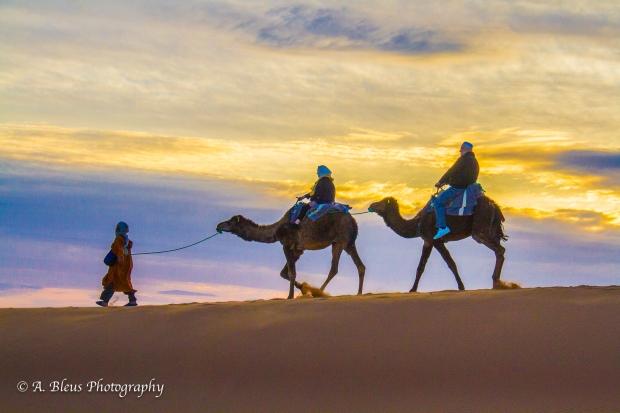 Sahara Desert, Morrocco, IMG_2391