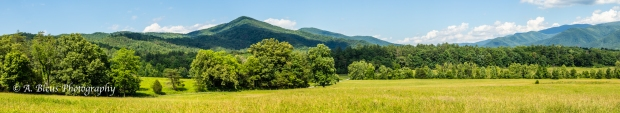 Cades Cove's view of Mountains, IMG_6815
