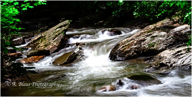 Pearson's Falls, Saluda, North Carolina__93E9857