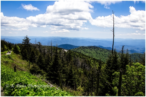 View from Clingmans Dome , IMG_6801