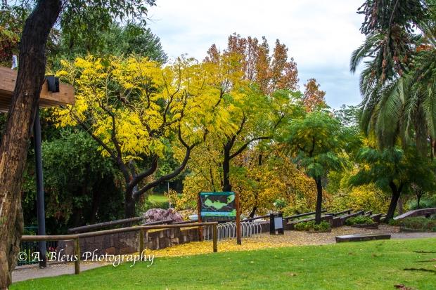 Parque Metropolitano, Santiago, Chile-5