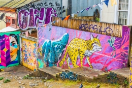 The Grafitti City 3- Valparaiso-7