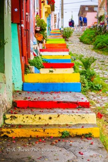The Grafitti City 3- Valparaiso-8