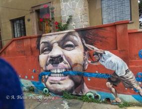 The Grafitti City - Valparaiso-11
