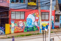 The Grafitti City - Valparaiso-6