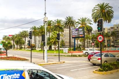 Viña del Mar 2, Chile-6