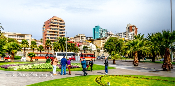 Viña del Mar, Chile-9
